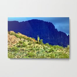 Cactus Against the Mountains Metal Print