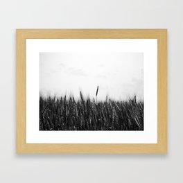 Whole Grain Framed Art Print