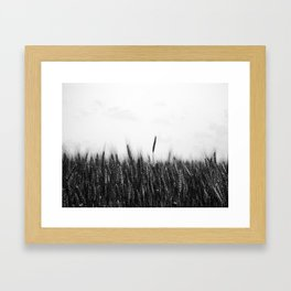 Whole Grain Framed Art Print