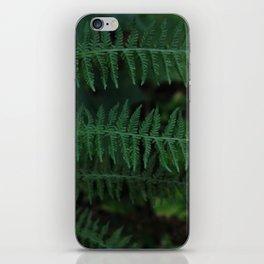 Green leaves of Christmas tree iPhone Skin