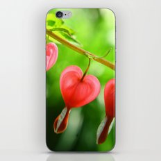 Bleeding Hearts iPhone & iPod Skin