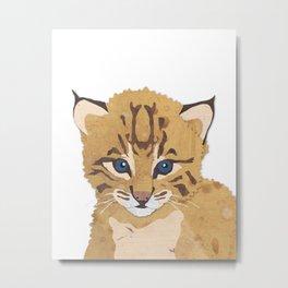 Baby Bobcat Metal Print