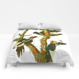Ivory-billed Woodpecker Comforters