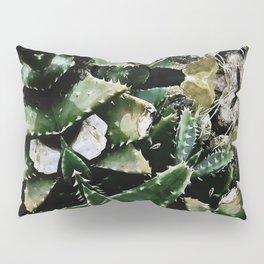 Succulents on Show No 1 Pillow Sham