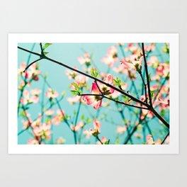 Aqua Spring Art Print