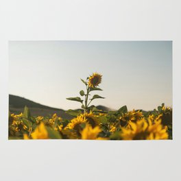 Sunflower (3) Rug