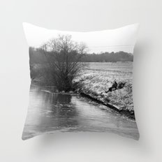 frozen fish... Throw Pillow