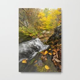 Cascade and Tree.  Doyle's River, Shenandoah National Park. Metal Print