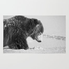 Alaskan Grizzly Bear in Snow, B & W - I Rug