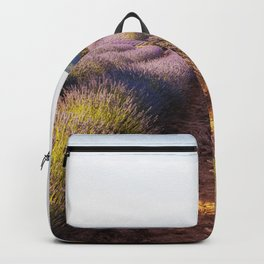 Lavender Fields at Sunset Backpack