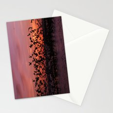 Volare Stationery Cards