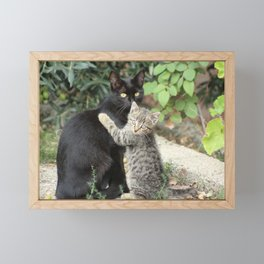 Mommy and me Kitten and Mother Cat Portrait Framed Mini Art Print