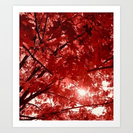 Ruby Fall Art Print