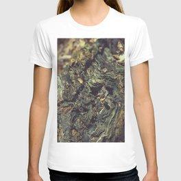 Rotten tree wood T-shirt