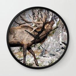 Wapiti Bugling (Bull Elk) Wall Clock