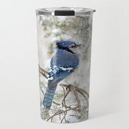 Snow Jay: American Blue Jay Travel Mug