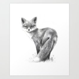 London Fox Art Print