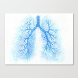 Subtle Breath Canvas Print