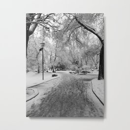 Into the Winter Park Metal Print