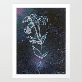 Bladder Campion in Space Art Print