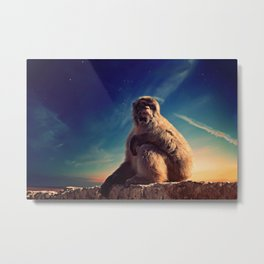 Daydreaming Macaque Metal Print