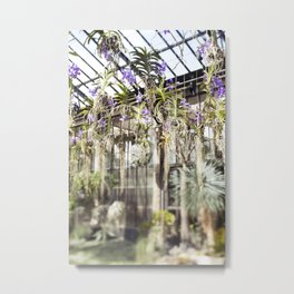 Orchids in the Air  //  The Botanical Series Metal Print