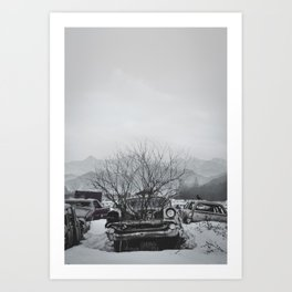 Car and Crow Art Print