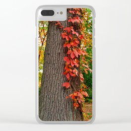 Fall Climb Clear iPhone Case