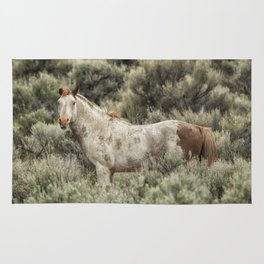 South Steens Stallion Alone on the Range Rug