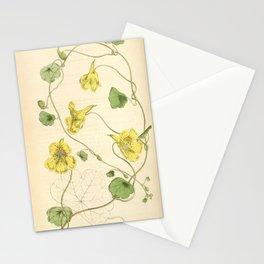 Flower 4245 tropaeolum crenatiflorum Notched petaled Indian Cress1 Stationery Cards