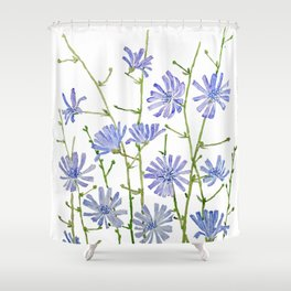 blue chicory watercolor Shower Curtain
