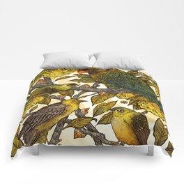 Citrine Comforters