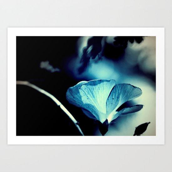 night flower  Art Print