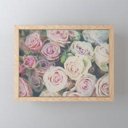 pink roses photograph Framed Mini Art Print