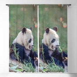 Panda breakfast Blackout Curtain