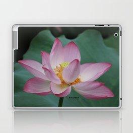 Hangzhou Lotus Laptop & iPad Skin