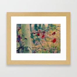 The last red leaves Framed Art Print
