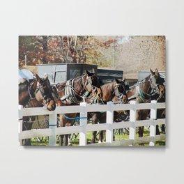 Line of Horses and Buggies Metal Print