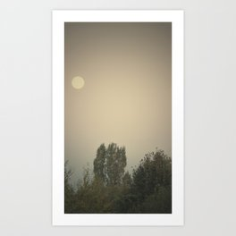 the dry moon Art Print
