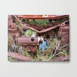 Rust Bucket Metal Print