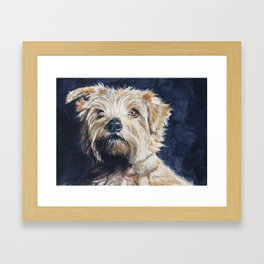 Norkfolk Terrier Framed Art Print