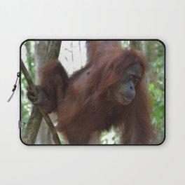 Bukit Lawang Orangutan Sumatra Laptop Sleeve