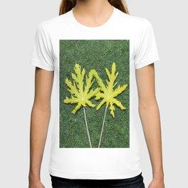FRONDS T-shirt