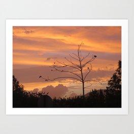 Orange Art Print