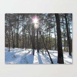 Shining Sun Through the Snowy Pines Canvas Print