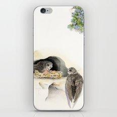 Swift - nesting bird on the Ligurian coast iPhone & iPod Skin