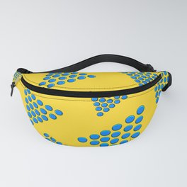 Which Way Is Up? Fanny Pack