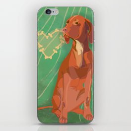 Hungarian Vizsla iPhone Skin