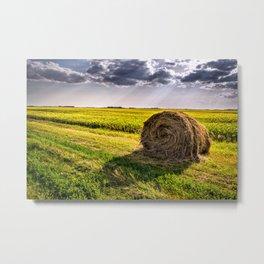Beautiful Nothing- North Dakota Metal Print
