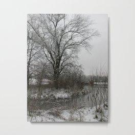 Light Dusting Metal Print